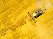 Aerial view of combine harvester. Harvest of wheat field. Industrial background on agricultural them poster
