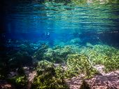 Practicing Diving And Snorkeling, Mysterious Lagoon, Beautiful Lagoon Of Transparent Turquoise Blue poster