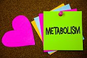 Handwriting Text Writing Metabolism. Concept Meaning Chemical Processes In Body To Produce Energy Fo poster