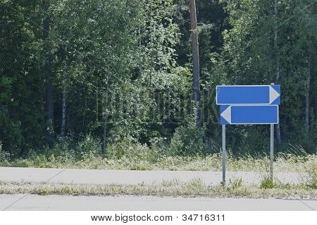 Road Signs In Forest