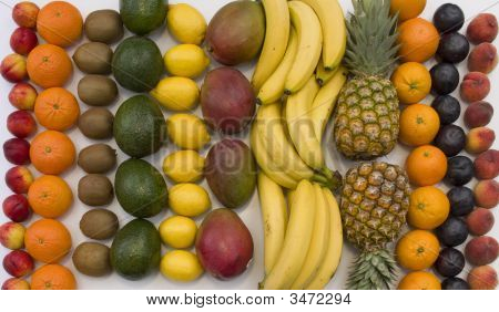 Tropical Fruit Lineup On White Background