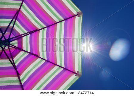 Purple Parasol