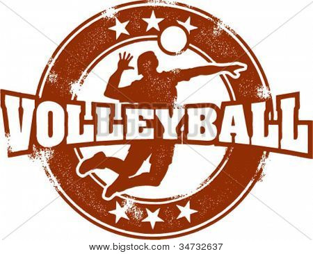 Vintage Style Volleyball Spike Sport Stamp