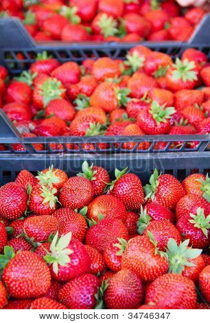 Strawberry In Market