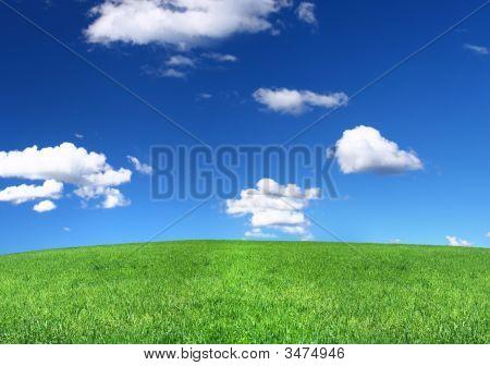 Panoramablick auf friedliche Grünland