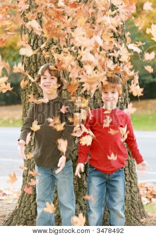 Boys Having Fun Throwing Leaves