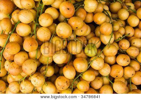 Baccaurea Ramiflora
