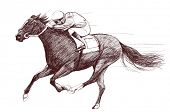 Vector illustration of a racing horse and jockey