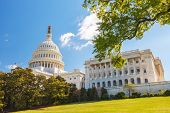 picture of american flags  - US Capitol and capitol hill - JPG
