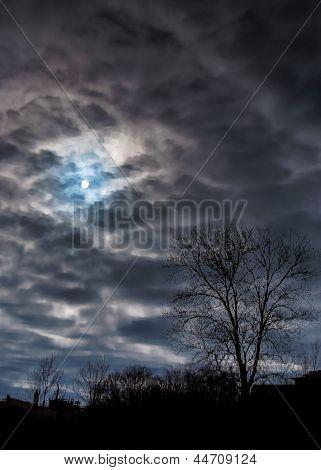 Reflection Of A Clody Sky On A Pond