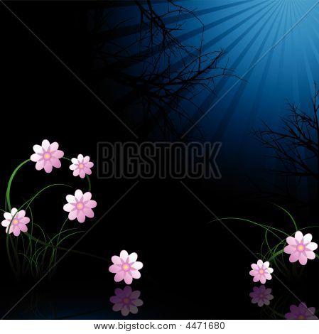 Winter Midnight Flowers
