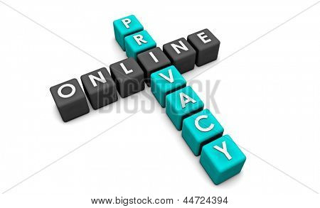 Online Privacy of your Data on the Web