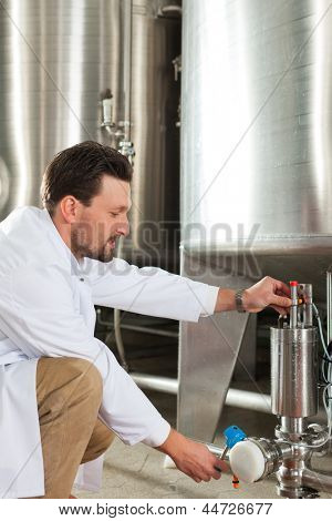 Brewer standing in his brewery and is examining the beer for its purity