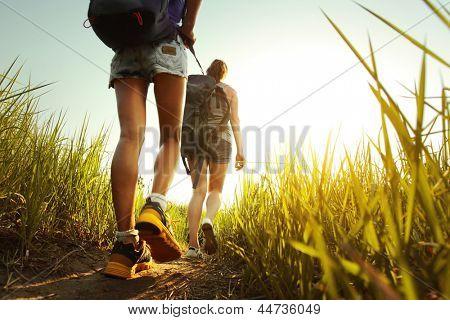 Caminhantes com mochilas caminha em um Prado com grama