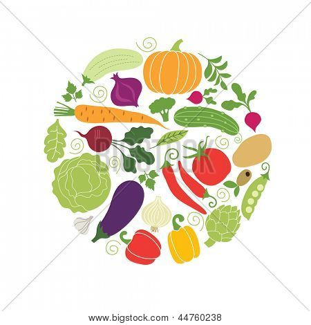 vector vegetables illustrations