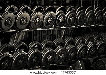 Row of Hand Barbells weight training equipment