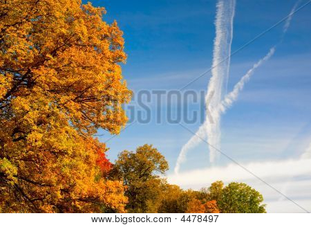 Autumn Sky Cross