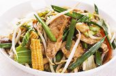 foto of chinese wok  - chicken with vegetables fried in wok - JPG