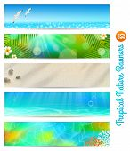 foto of tropical birds  - Travel and vacation vector banners with tropical natures - JPG