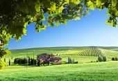 picture of farmhouse  - Tuscany landscape with typical farm house - JPG