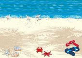 picture of craw  - Background with tropical sand beach - JPG