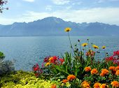 stock photo of montre  - Lake Geneva from the Embankment in Montreux. Switzerland.