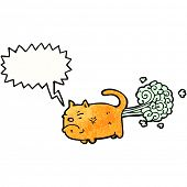 foto of fart  - cartoon farting cat - JPG