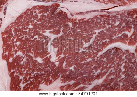 The marbling of a wagyu ribeye steak. The distribution of low-cholesterol, low-melting point fat throughout the meat gives wagyu its distinctive look . It the most expensive kind of beef.