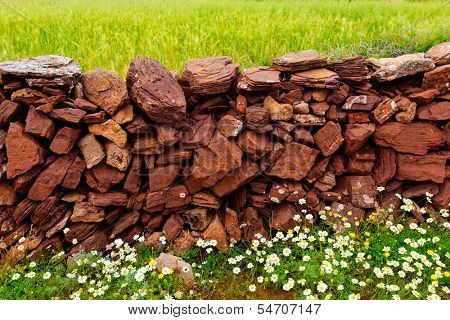 Masonry stonewall in spring with flowers at Menorca Balearic islands