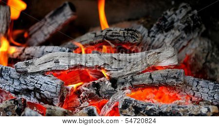 Wooden embers close-up on a whole background