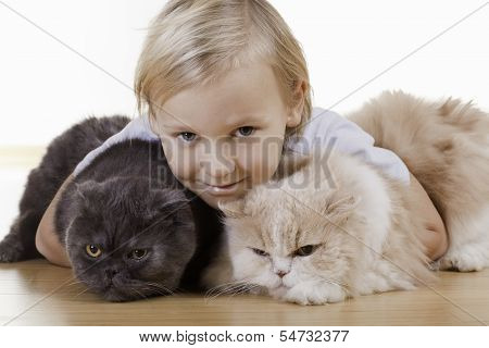 Blond Boy With Cats