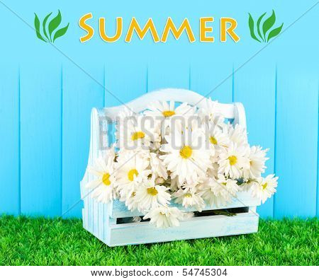 Flowers in wooden box on grass on blue background
