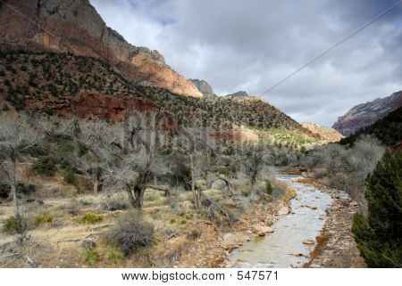 Virgin River: Zion National Park
