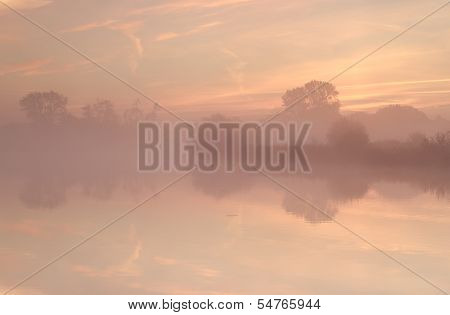 Tree Silhouettes By Lake During Misty Sunrise