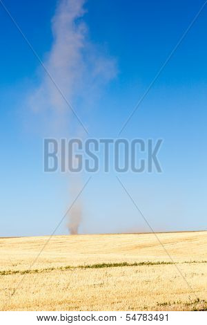 Dust Devil In A Field