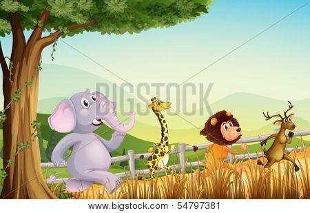 Illustration of the four wild animals running