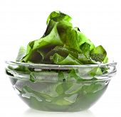 stock photo of green algae  - seaweed kelp  - JPG