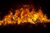 stock photo of ember  - Blazing flames over black background - JPG