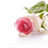 pic of beads  - Pink rose - JPG