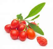 stock photo of barberry  - Goji berry isolated on white background - JPG