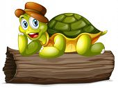 pic of carapace  - Illustration of a turtle above a log on a white background - JPG