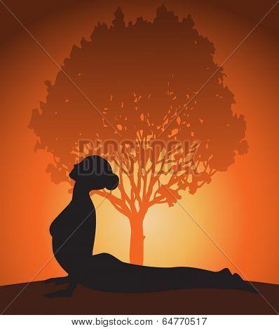 Yoga woman in cobra pose