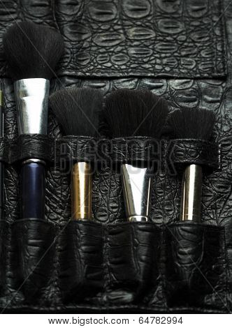 Professional make-up artist brush's