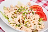 picture of scallion  - Mix salad with lettuce scallion tomatoes bacon and mayonnaise - JPG