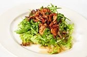 picture of bolete  - Mix salad with lettuce rucola and fried bolete - JPG