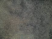 Texture Of The Chapped Ruberoid