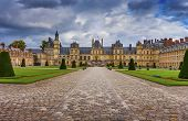 stock photo of century plant  - Fontainebleau royal chateau located 35 mi - JPG