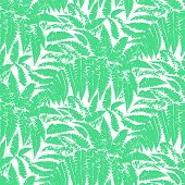 stock photo of fern  - Seamless floral vector pattern inspired by leaves of tropical plants and nature - JPG