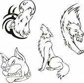 picture of wolf moon  - Tattoos  - JPG