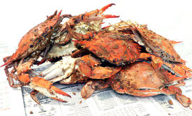 stock photo of cooked blue crab  - cooked blue crabs - JPG
